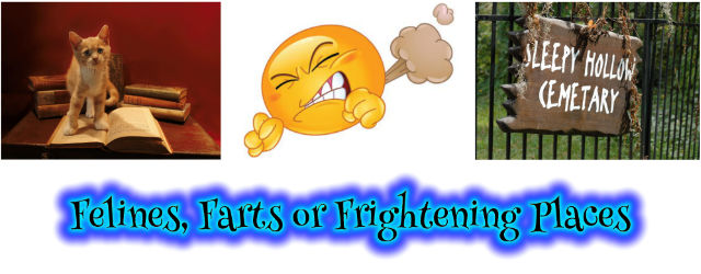 Felines, Farts or Frightening Places
